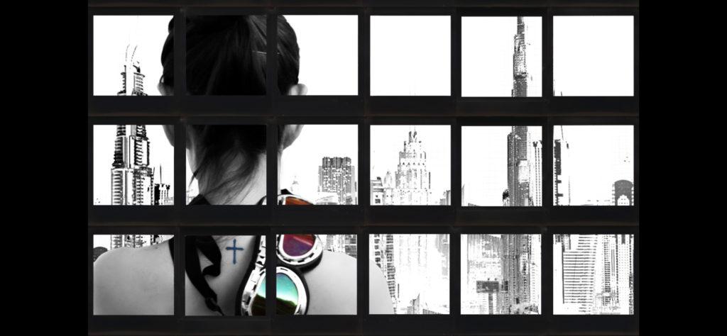 Baptiste Tavernier - Polaroid Mosaic